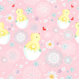 Easter chicks texture Royalty Free Stock Photography