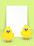 Easter chicks and white blank over dotted background Royalty Free Stock Photos