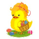 Easter chiken  with a basket Royalty Free Stock Photos