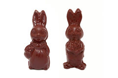 Easter chocolate bunnies. Isolated on white Stock Photos