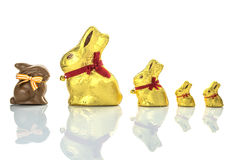 Easter chocolate bunnies. Lined up on white background Stock Photography