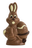Easter chocolate bunny Royalty Free Stock Image
