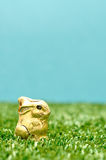 An easter chocolate bunny wrapped in gold paper Stock Image
