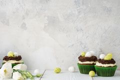 Easter chocolate cupcakes decorated with nest and candy eggs. Recipe or menu mockup royalty free stock photos