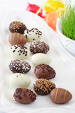 Easter chocolate eggs Stock Images