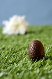 Easter chocolate eggs and flower scene Royalty Free Stock Photo