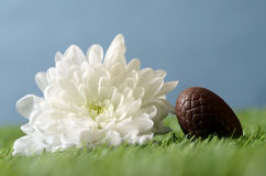 Easter chocolate eggs and gardening scene Stock Photography