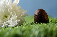 Easter chocolate eggs and hen Stock Image