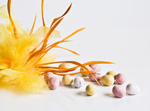 Easter chocolate eggs with yellow feather Royalty Free Stock Photo
