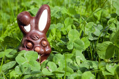 Easter chocolate rabbit Royalty Free Stock Photography
