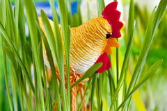 Easter cock Stock Images