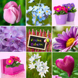 Easter collage. Collage of several photos around easter Stock Images