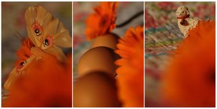 Easter collage with egg Royalty Free Stock Images