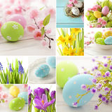 Easter collage. Easter eggs and spring flowers royalty free stock photo
