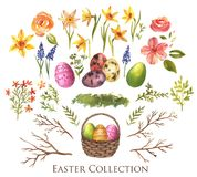 Easter collection. Hand-drawn watercolor Easter decoration collection. Eggs,willow branches, spring flowers, basket isolated on the white background. Spring Stock Illustration