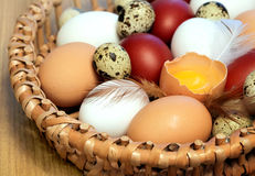 Easter color eggs Royalty Free Stock Photos