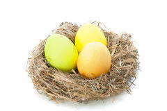 Easter color eggs in nest Stock Images