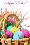 Easter colored eggs in the basket. Royalty Free Stock Images