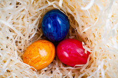 Easter colored eggs. Stock Image