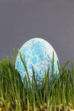 Easter colored eggs Royalty Free Stock Photography
