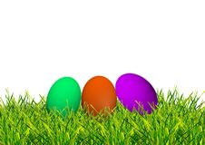 Easter colored eggs on the green grass. Easter eggs on grass with a white background Royalty Free Stock Photos