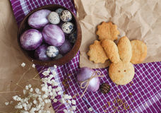 Easter colored eggs and homemade cookies Stock Photos