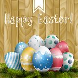 Easter colored eggs on pine tree on wooden background Stock Photography