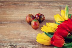 Easter colored eggs and yellow and red tulips on brown wooden board. Royalty Free Stock Photography