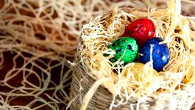Easter colored quail eggs. Woman's hand open rattan basket lid. There are colorful Easter quail eggs in the straw stock video