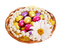 Easter. Colorful Chocolate Eggs with Chamomile Flo Stock Images