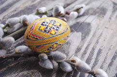 Easter colorful egg and willow branches on wooden background. Springtime. Holiday card. Spring willow twigs with catkins and ornat Royalty Free Stock Photography