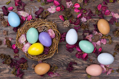 Easter colorful eggs in bird nest on wooden background Royalty Free Stock Photo