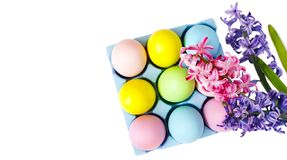 Easter colorful eggs and flowers on white background. stock images