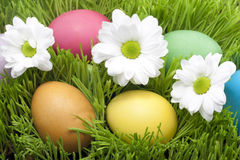 Easter colorful eggs in the grass Stock Photography