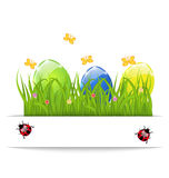 Easter colorful eggs in green grass with space for Royalty Free Stock Photos