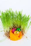 Easter colorful eggs near grass on decorative nest Royalty Free Stock Photography