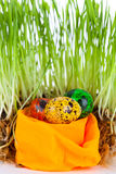 Easter colorful eggs near grass on decorative nest Stock Photos