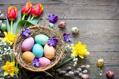 Easter colorful eggs in the nest with flowers on vintage wooden boards and empty space royalty free stock images