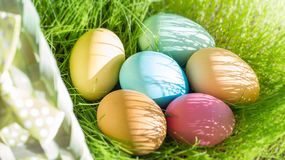Easter colorful eggs in spring green grass in sunlight floral abstract background stock photos