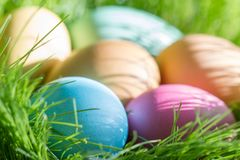 Easter colorful eggs in spring green grass in sunlight floral abstract background stock photo
