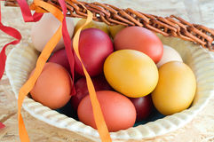Easter colorful eggs and withe Stock Image
