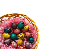 Easter colorful quail eggs in  a basket. Happi Easter. Painted eggs in a basket on the craft background Royalty Free Stock Photography