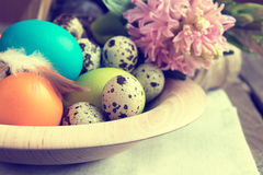 Easter colorful and quail eggs Stock Image