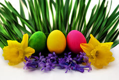 Easter colors. Easter egg and spring flower in white background Stock Photography