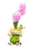 Easter composition with beautiful hyacinth, eggs Royalty Free Stock Image