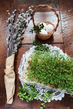 Easter composition of catkins, eggs and cress on wooden table Royalty Free Stock Photos