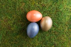 Easter composition. Easter colored eggs lie on a moss. Top view. Easter composition royalty free stock photo