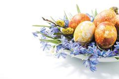 Easter composition. Colorful easter eggs and spring flower composition Royalty Free Stock Image