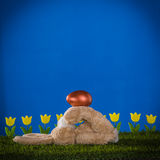 Easter composition with  dexterous, capable, playful rabbit and Stock Images