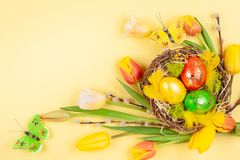 Easter composition with Easter eggs in nest and  spring flowers